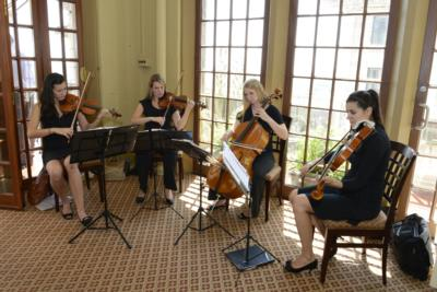 Allium Strings | Chicago, IL | String Quartet | Photo #7