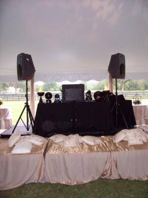Tom Cash Entertainment | Lake Zurich, IL | Mobile DJ | Photo #9