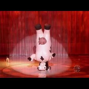 Miami Singing Telegram | Breakdancing Cow OR Gecko Multicultural Dance Show