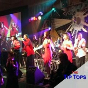 Laceys Spring 80s Band | The Tip Tops