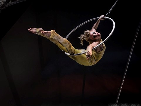 Dc-Circus - Acrobat - Washington, DC