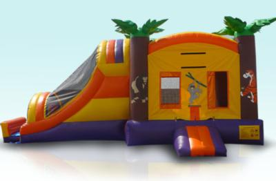 Jump N Party Inflatables | Murrieta, CA | Moonbounce | Photo #5