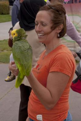 Joel's Exotic Parrot For Events And Parties | Oceanside, CA | Animals For Parties | Photo #3