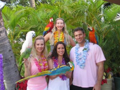Joel's Exotic Parrot For Events And Parties | Oceanside, CA | Animals For Parties | Photo #22