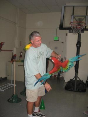 Joel's Exotic Parrot For Events And Parties | Oceanside, CA | Animals For Parties | Photo #11