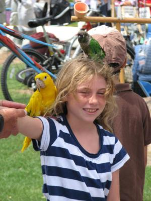 Joel's Exotic Parrot For Events And Parties | Oceanside, CA | Animals For Parties | Photo #18
