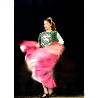 El Arte Flamenco | Boston, MA | Flamenco Dancer | Photo #10