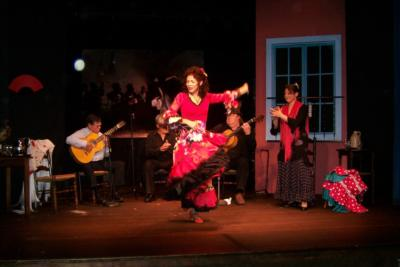 El Arte Flamenco | Boston, MA | Flamenco Dancer | Photo #13