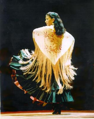 El Arte Flamenco | Boston, MA | Flamenco Dancer | Photo #5