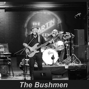 Macon, GA Dance Band | The Bushmen
