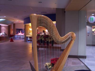 Kyrou's Music Studio | Fort Wayne, IN | Harp | Photo #21
