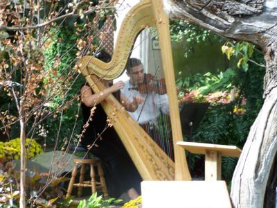 Kyrou's Music Studio | Fort Wayne, IN | Harp | Photo #8