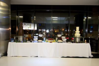 Custom Party Bars & Chocolate Fountain Pros | Torrance, CA | Bartender | Photo #4