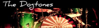 The Dogtones | Edmonds, WA | Cover Band | Photo #2