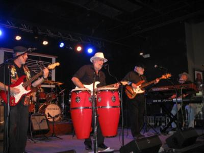 The Doc Robin Band | Norfolk, VA | Blues Band | Photo #4