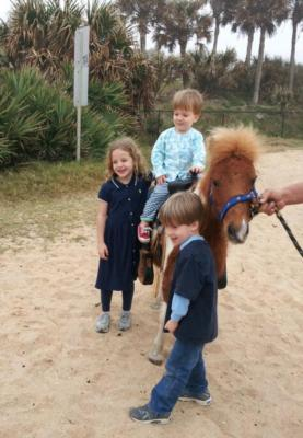 A+ Ponies For Parties | New Smyrna Beach, FL | Pony Rides | Photo #3