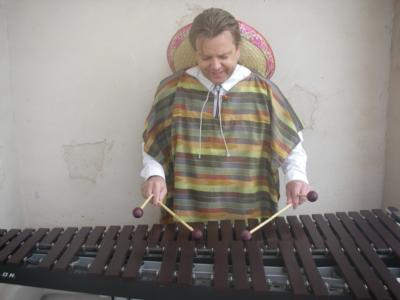 Mexican Marimba Music By Sean Mireau | Phoenix, AZ | Mariachi Band | Photo #4