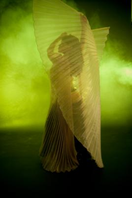 Dellaneira | Philadelphia, PA | Belly Dancer | Photo #4