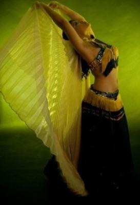 Dellaneira | Philadelphia, PA | Belly Dancer | Photo #13