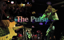 The Pulse | Detroit, MI | Variety Band | The Pulse Video