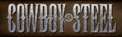 Cowboy Steel | Houston, TX | Country Band | Photo #10