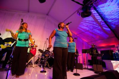 Fabulous Motown Revue | Saint Louis, MO | Dance Band | Photo #15