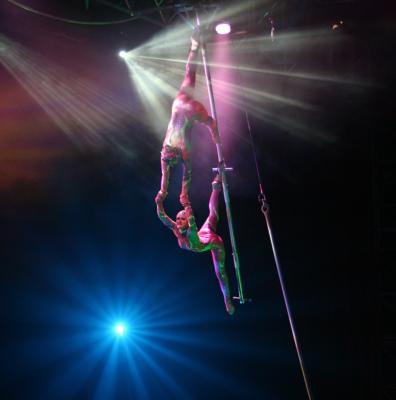 Cirque Vertigo | Sarasota, FL | Circus Act | Photo #8