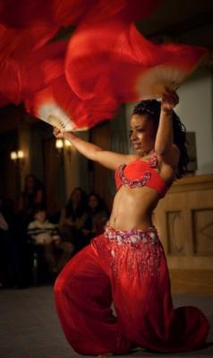 Ebony - Traditional and Urban Fusion Belly Dance | Washington, DC | Belly Dancer | Photo #12
