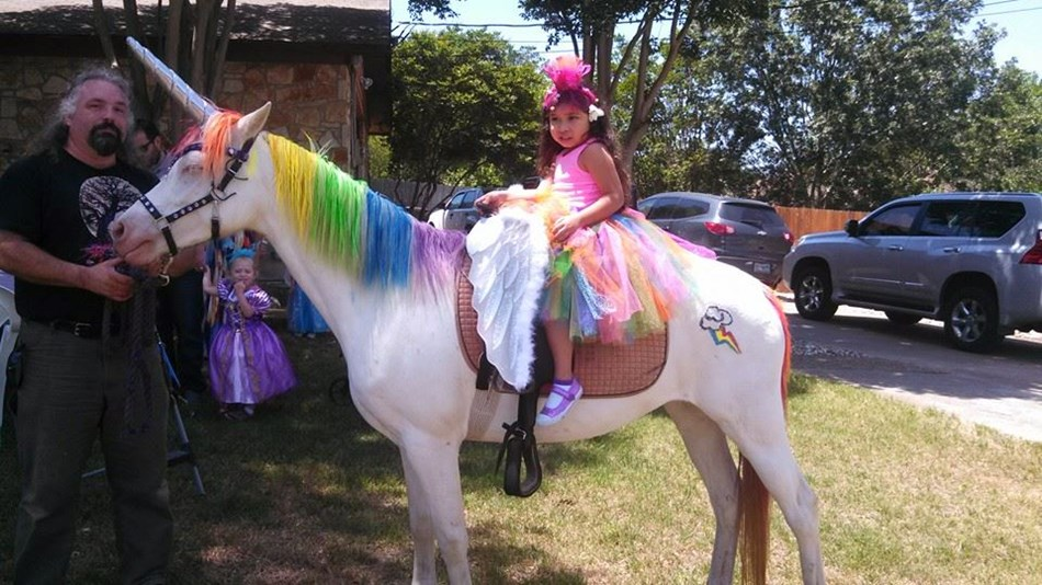 Unicorn, Pegasus, Rainbow Dash