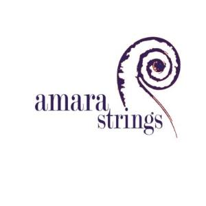New York Classical Quartet | Amara Strings LLC