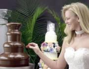 Delaware Chocolate Fountain Rentals's Main Photo