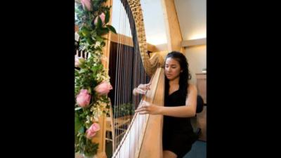 Harpist Hillary | Fort Worth, TX | Harp | Photo #13