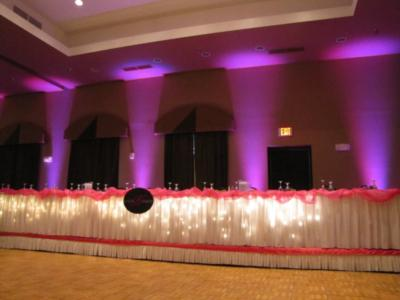 Local Motion Entertainment | State College, PA | Event DJ | Photo #2