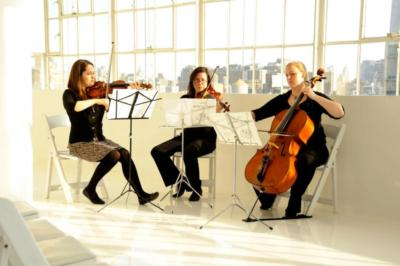 Helvetica String Trio | Brooklyn, NY | Classical Trio | Photo #2