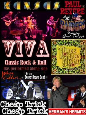 Viva Rock & Roll | Miami, FL | Classic Rock Band | Photo #6