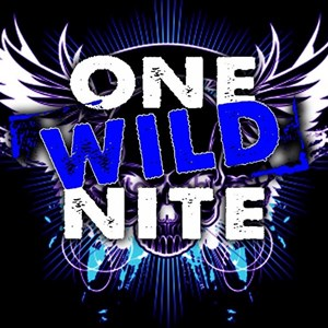 Flagler Beach Cover Band | One Wild Nite Band