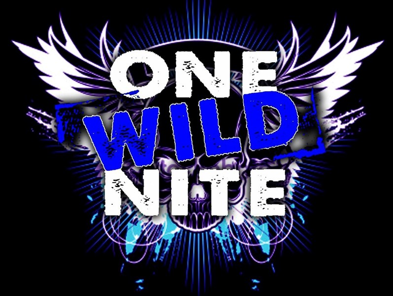 One Wild Nite Band - Cover Band - Debary, FL