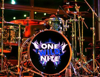 One Wild Nite Band | Debary, FL | Cover Band | Photo #4