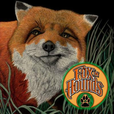 Fox N Hounds | Columbus, OH | Bluegrass Band | Photo #8