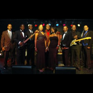 Palmetto Dance Band | The Answer Band