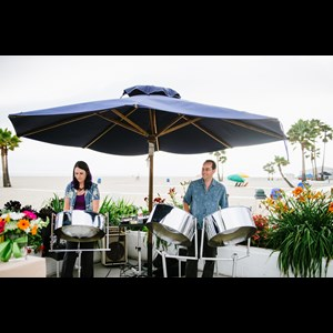 Palm Springs Reggae Singer | NESTA steel drums