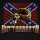 Georgia Southern Rock Band | Cottonmouth