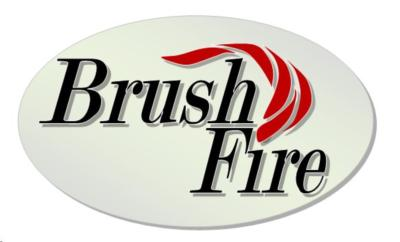 Brush Fire Bluegrass | Atlanta, GA | Bluegrass Band | Photo #21