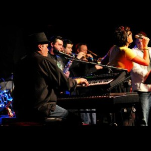 The Rhythm Kings - Dance Band - Bloomfield Hills, MI