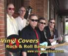 Vinyl Covers - Cover Band - Winfield, IL