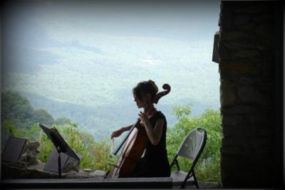 Mulfinger String Quartet | Greenville, SC | Classical String Quartet | Photo #7