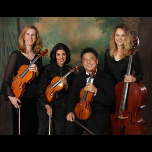 Mountain City String Quartet | Amadeus String Ensemble