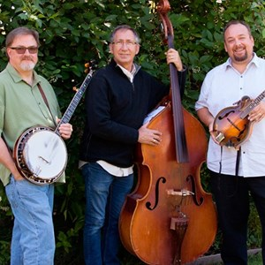 Sonoma, CA Bluegrass Band | Vintage Grass