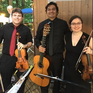 Arlington Heights, IL Classical Trio | The Continental String Ensemble