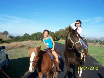 Ponies R Us | Martinez, CA | Pony Rides | Photo #1